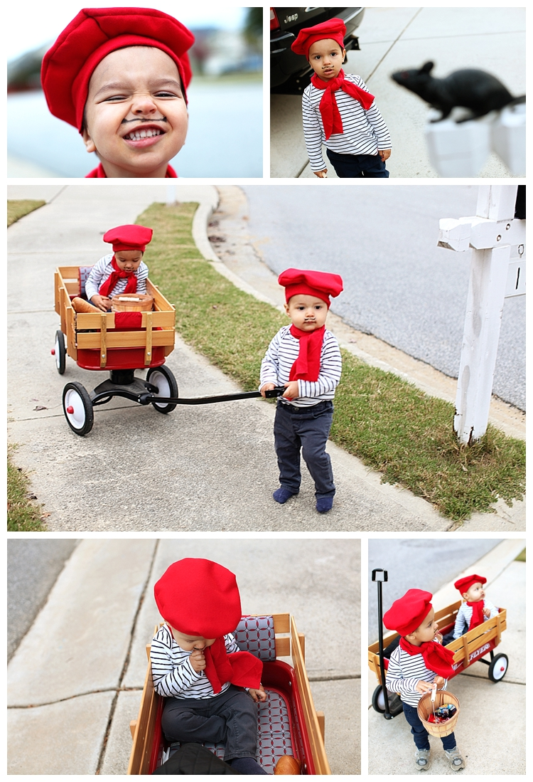 LianaPhotography Toddler FrenchMan